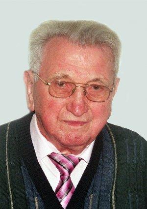 Portrait von Josef Wellein